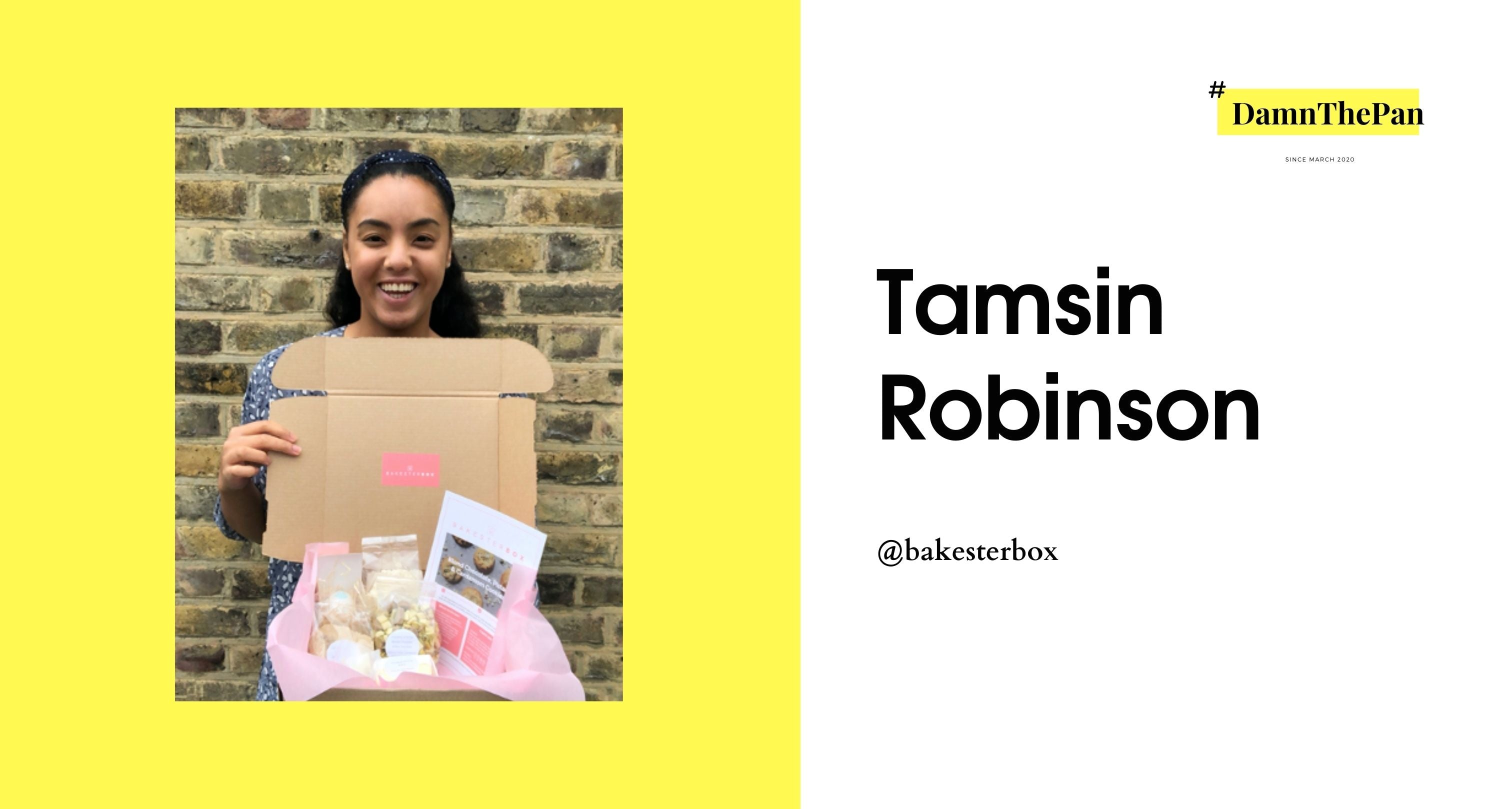 Tamsin Robinson Bakester Box in Damn the Pan #damnthepan
