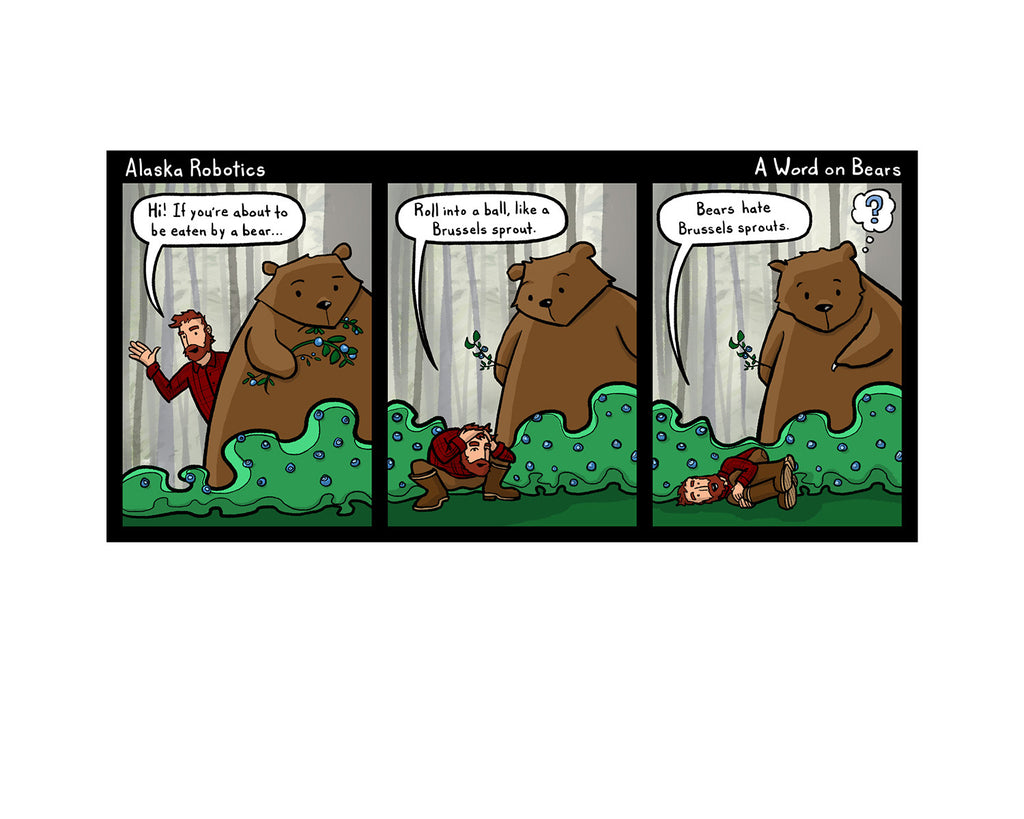 A Word on Bears