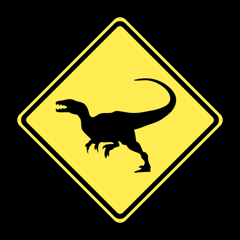 Raptor Xing - Kids T-Shirt