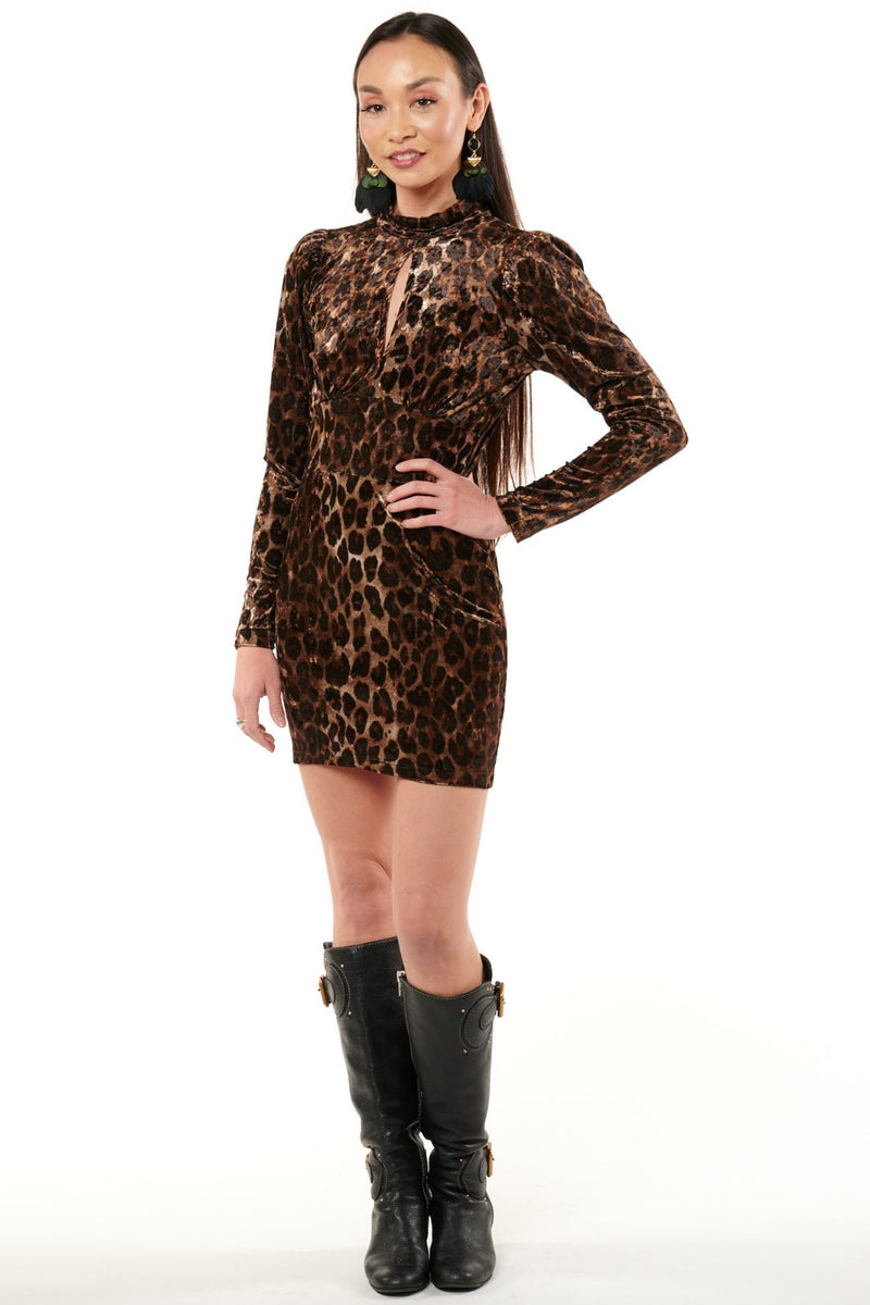 Velvet Jaguar Dress