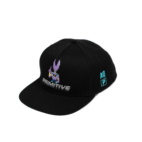 DESTROYERS SNAPBACK
