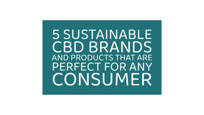 5 Sustainable CBD Brands and Products That Are Perfect For Any Consumer