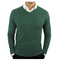 CC Perfect Slim Fit V Neck Sweaters for Men