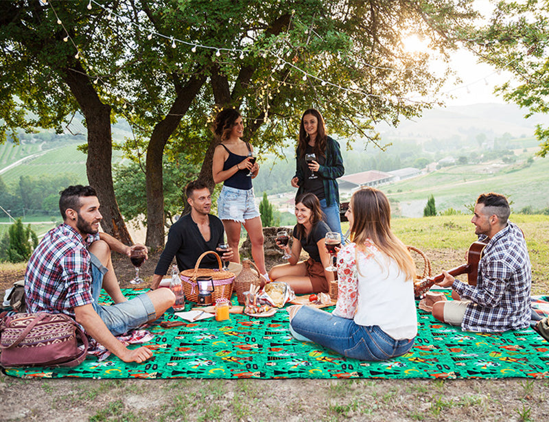 Friends on picnic blanket drinking wine