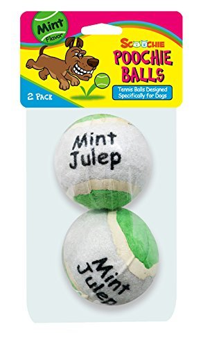 Mint Flavored Tennis Balls | 2 Count | Scoochie Poochie | Tough balls for dogs