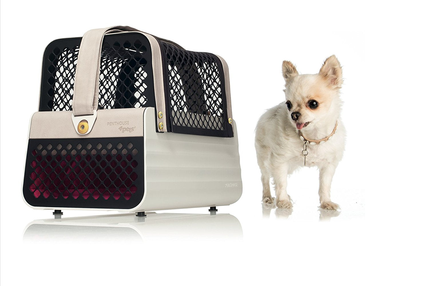 Crash Tested Dog Carry on for Small Dogs | Safe Transportation of Small Dogs in a Car | Safe Dog Carrier | 4 Pets