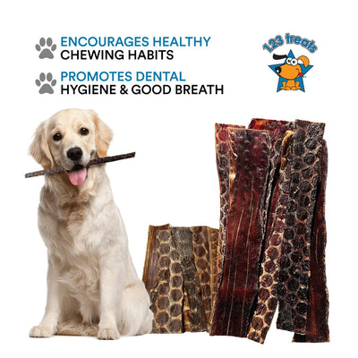 12 inches - BEEF ESOPHAGUS for Dogs | All Natural Beef Chews |20 Count or 1 Pound of Meat Jerky treats from Free-Range Grass Fed Cattle with No Hormones, Additives or Chemicals | From 123 Treats