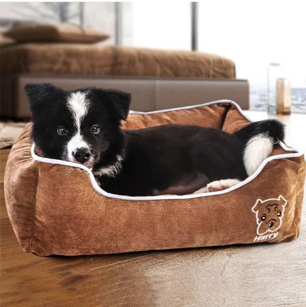 Discover our wide collection of dog house foldable beds, extra comfy beds, corduroy beds, dog houses, outdoor houses, and fast-absorbing mats.