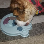 Puzzle Toys Food Dispenser - Dogzy Home