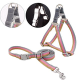 Harness And Leash Set - Dogzy Home