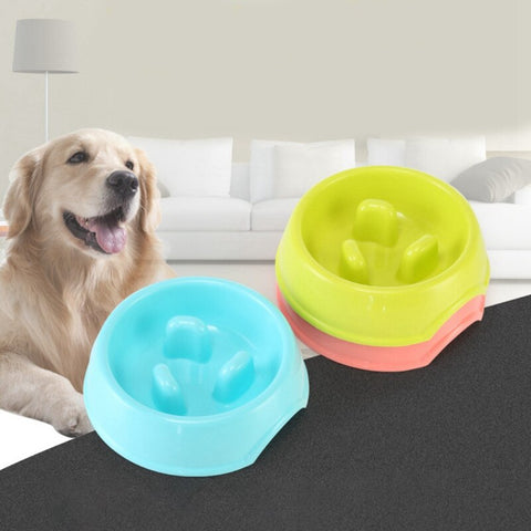 Puppy Slowly Feeding Bowl