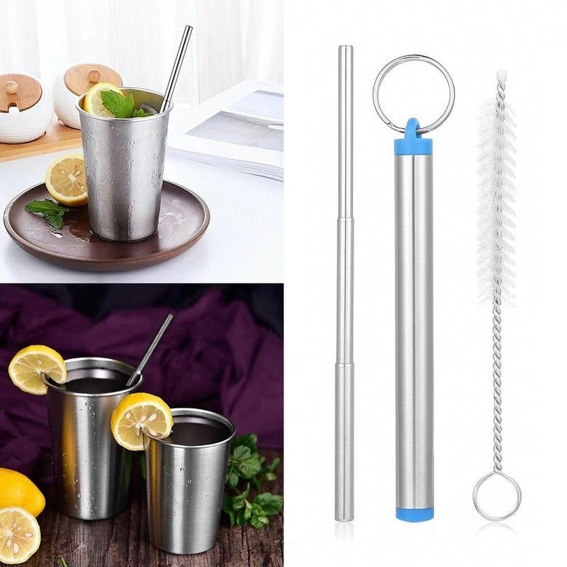 Reusable Collapsible Telescopic Travel Drinking Straw & Cleaning Brush & Case Set