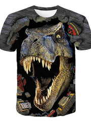 Kids Boys' Basic Street chic Dinosaur Color Block 3D Animal Print Short Sleeve Tee Rainbow