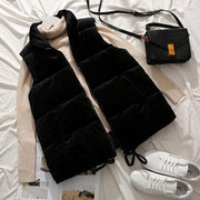 Winter Vest Women Waistcoat 2019 Female Sleeveless Jacket Stand Collar Warm Velvet Vest Outwear