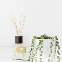 Load image into Gallery viewer, Reed Diffuser by Pure Palette