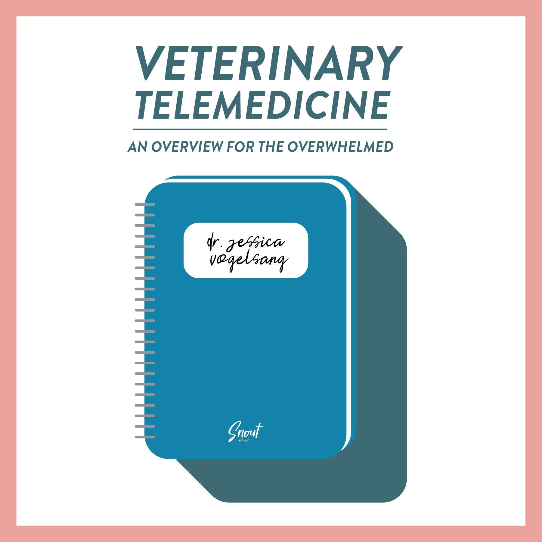 Veterinary Telemedicine: An Overview for the Overwhelmed