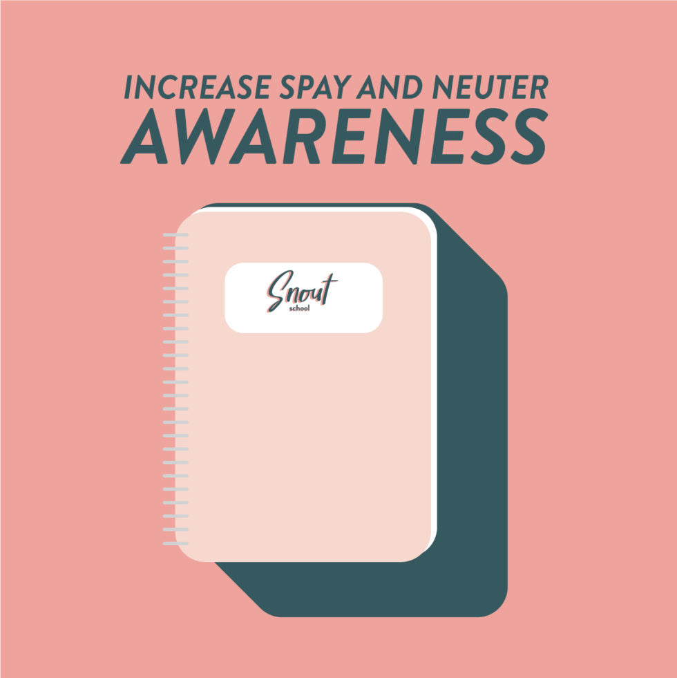 MARKETING PLAN: INCREASE SPAY & NEUTER AWARENESS