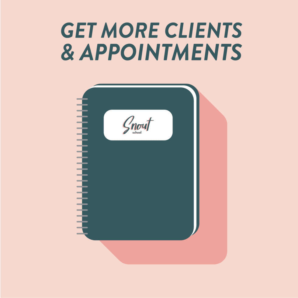 MARKETING PLAN: GET MORE CLIENTS & APPOINTMENTS