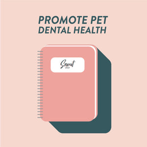 MARKETING PLAN: PROMOTE PET DENTAL HEALTH