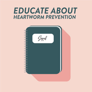 MARKETING PLAN: EDUCATION ABOUT HEARTWORM PREVENTION