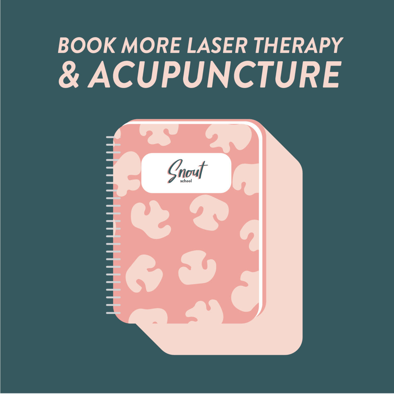 MARKETING PLAN: BOOK MORE LASER THERAPY & ACUPUNCTURE