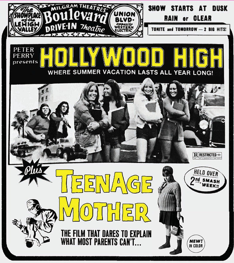 HOLLYWOOD HIGH / TEENAGE MOTHER BLU-RAY