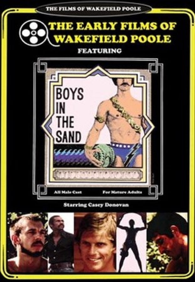 BOYS IN THE SAND DVD