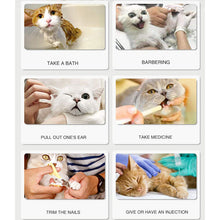Load image into Gallery viewer, Adjustable Cat Paw Protector