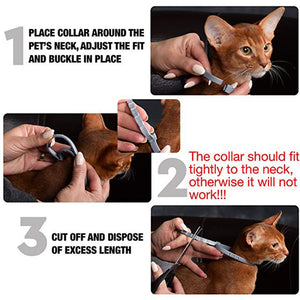 Anti Flea Pet Collar