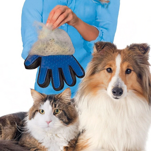 Pet Glove Cat