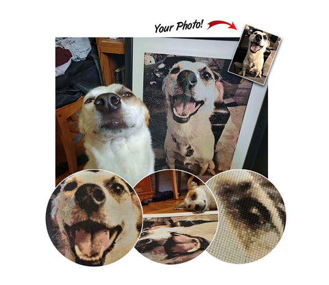 Custom diamond paiting of your pet