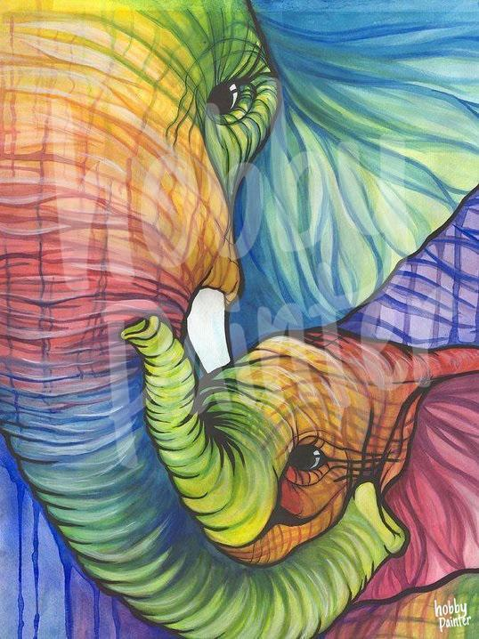 Picture art colourful elephant