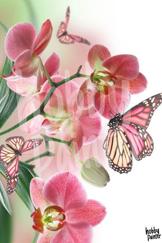 Diamond painting flower with butterfly