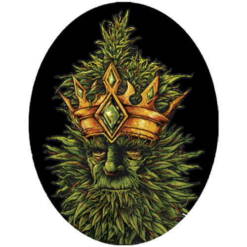 King Kola - Sticker