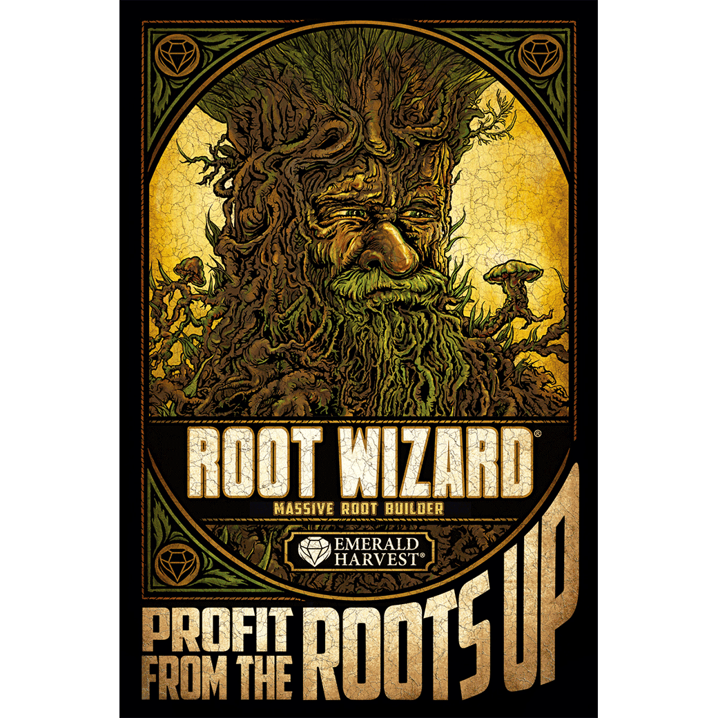 Root Wizard - Poster
