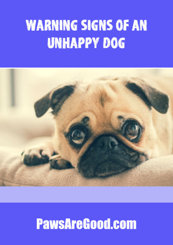Warning signs of an unhappy dog