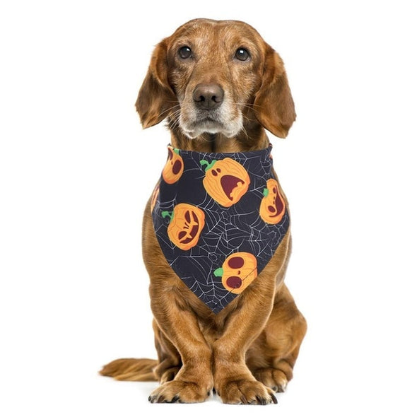 Fall Halloween Dog Bandana