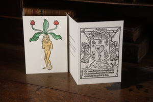 The Mandrake -  Hand coloured letterpress card