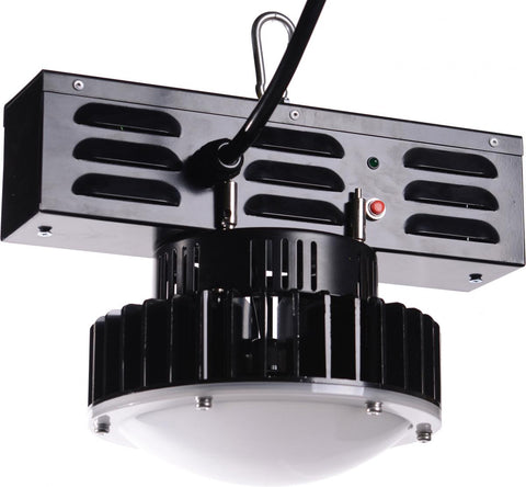 LED Low Bay Extra low voltage temporary lighting, safe, quick to install, plug in construction lighting