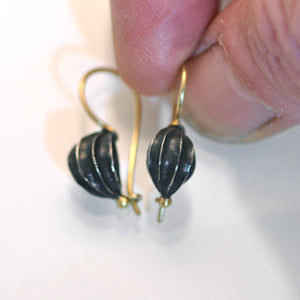 Fat seed pod earrings, oxidised silver with 18ct Gold wire