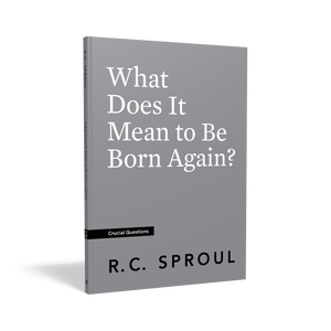 What Does It Mean to Be Born Again? — Paperback