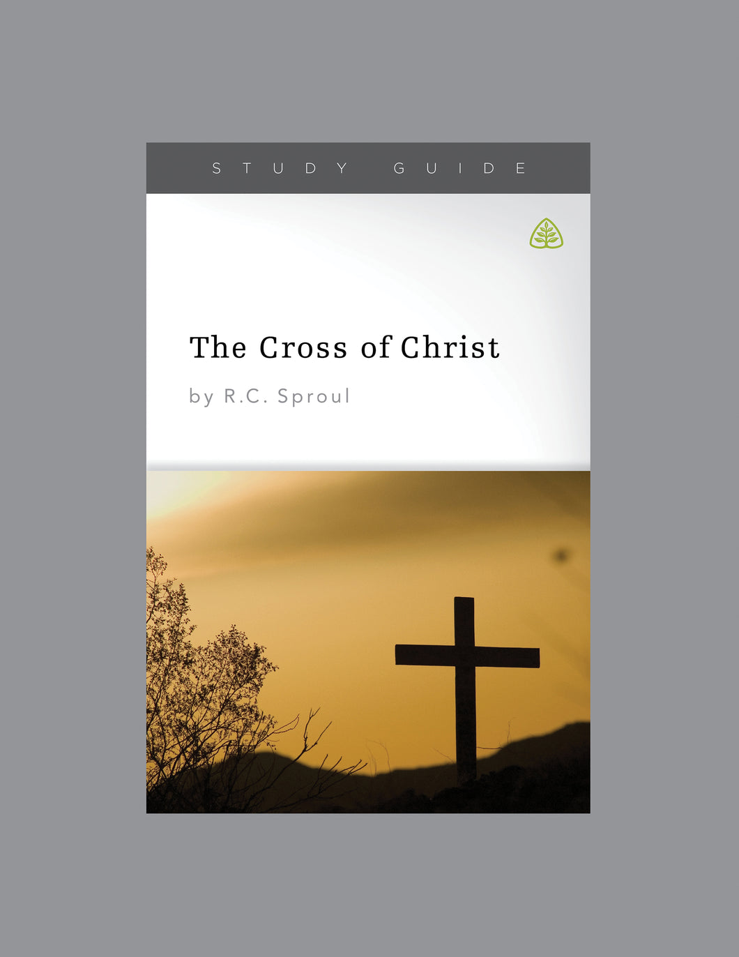 The Cross of Christ — Study Guide