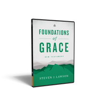 Load image into Gallery viewer, Foundations of Grace: New Testament — DVD