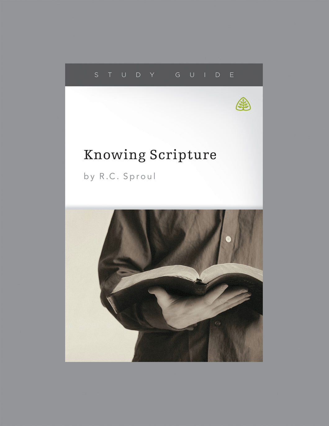 Knowing Scripture — Study Guide