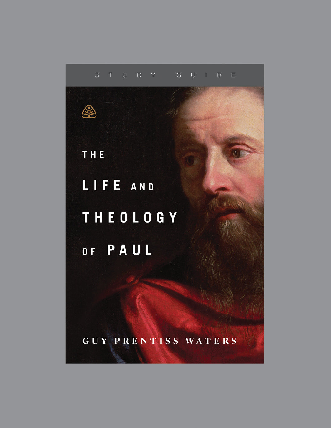 The Life and Theology of Paul — Study Guide