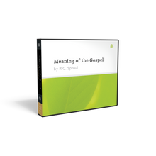 Load image into Gallery viewer, Meaning of the Gospel — CD