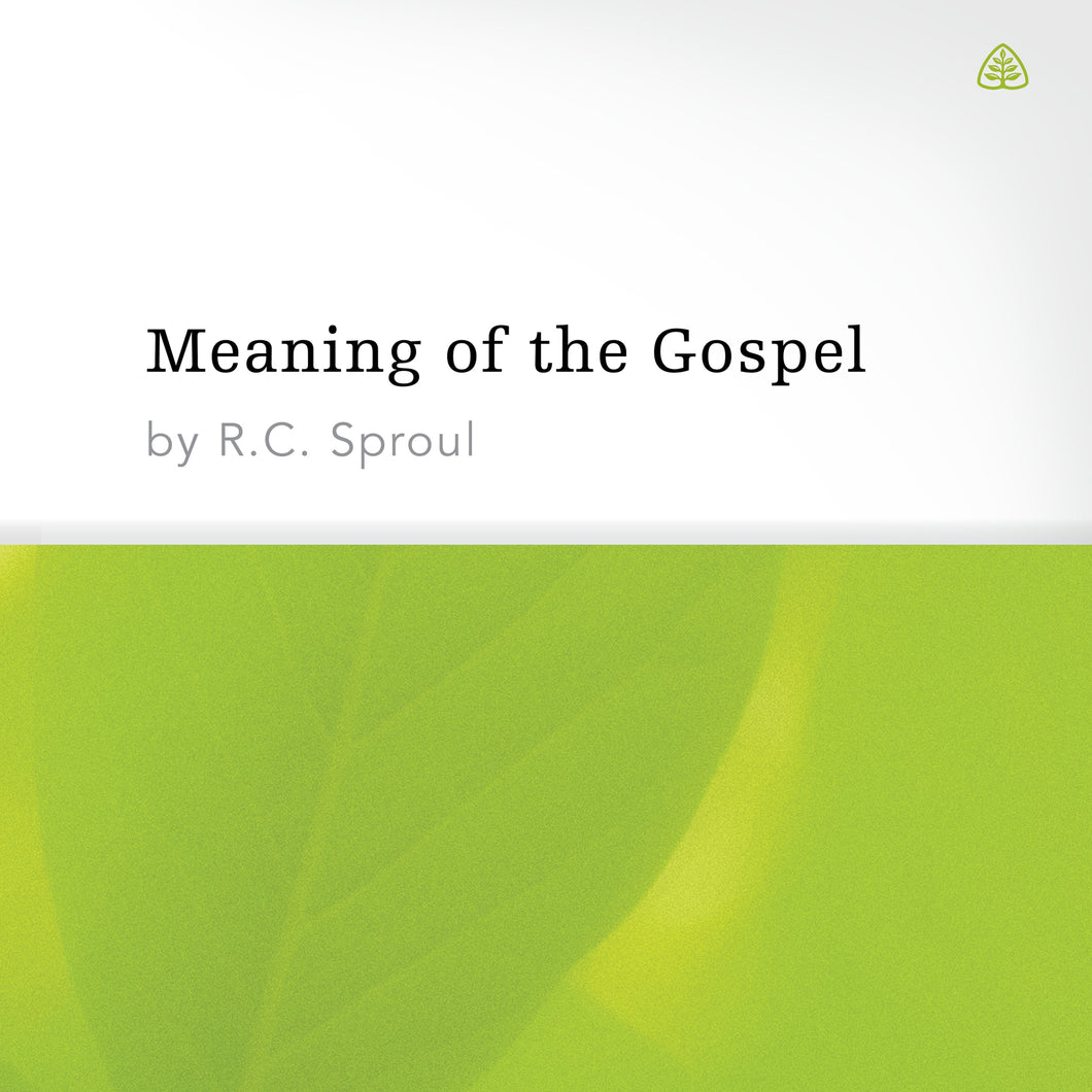 Meaning of the Gospel — Download