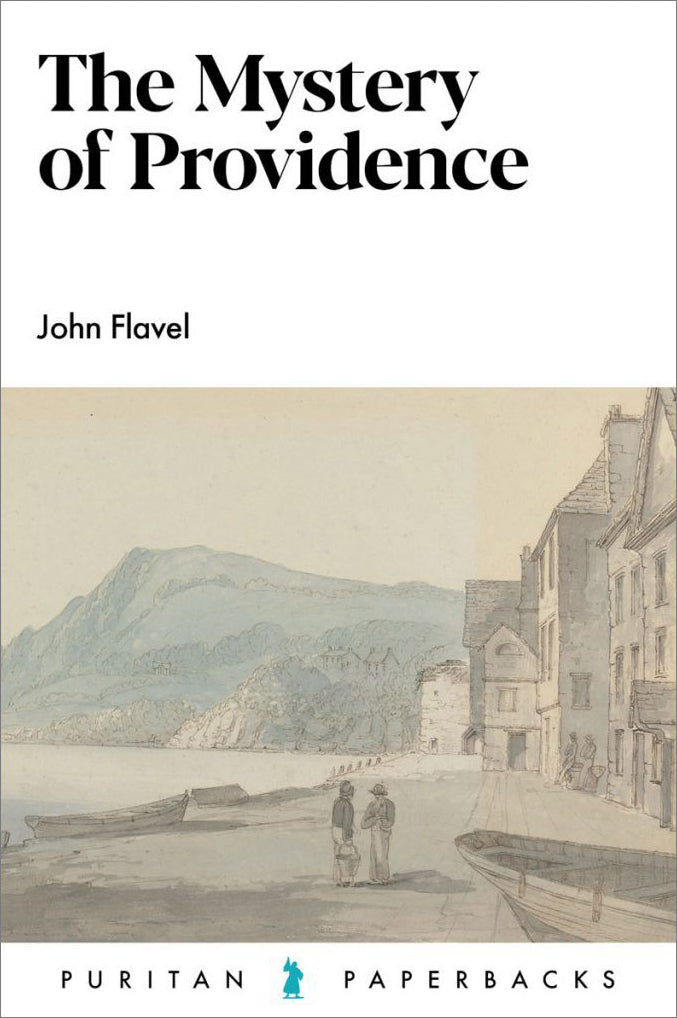 The Mystery of Providence — Paperback