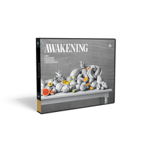 Load image into Gallery viewer, Awakening: 2018 National Conference — MP3 CD