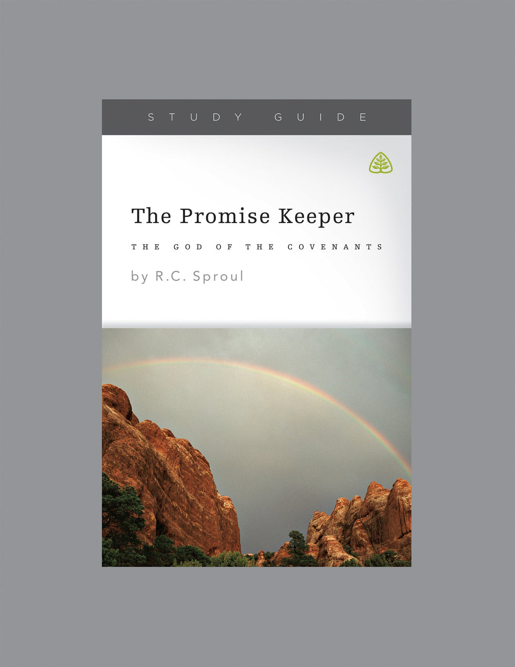 The Promise Keeper: God of the Covenants — Download Study Guide PDF (1 License)
